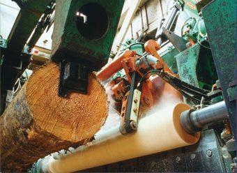 wood_harvesting_sawmill